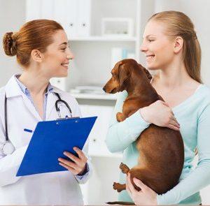 MBA en Dirección de Clínicas Veterinarias